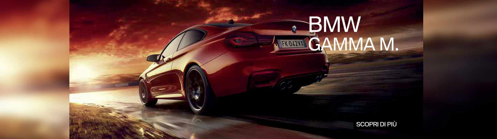BMW-Gamma-M-min.jpg